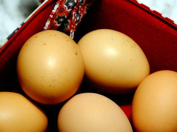 ricette classiche e informazioni sulle uova