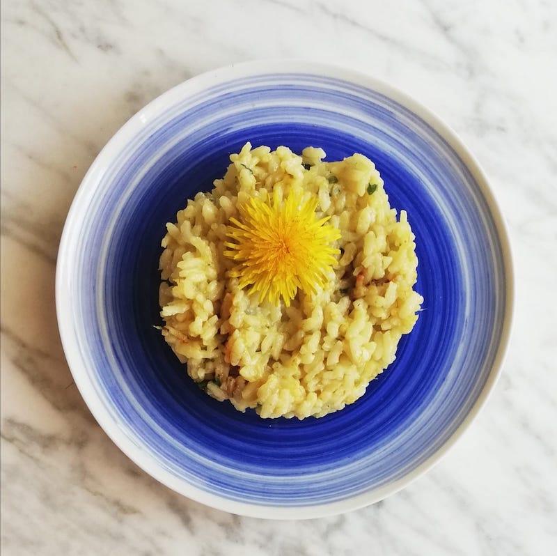 risotto con fiore di tarssaco e aceto balsamico